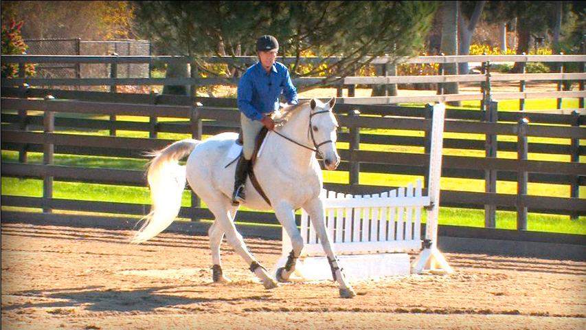 Fundamentals of Flatwork Basic
