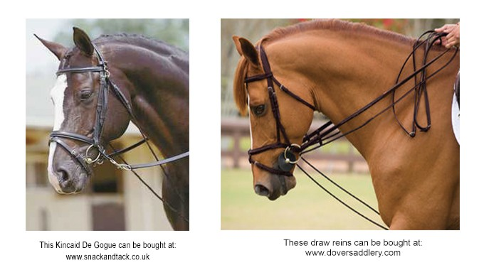 Supplementary Reins Other Than Draw Reins