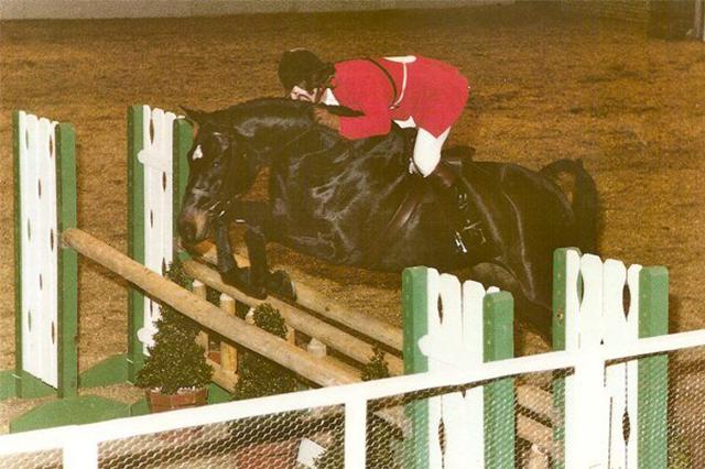 Bernie Traurig, Gozzi, hunter horse