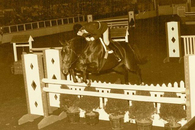Bernie Traurig, Riot Free, hunter horse,