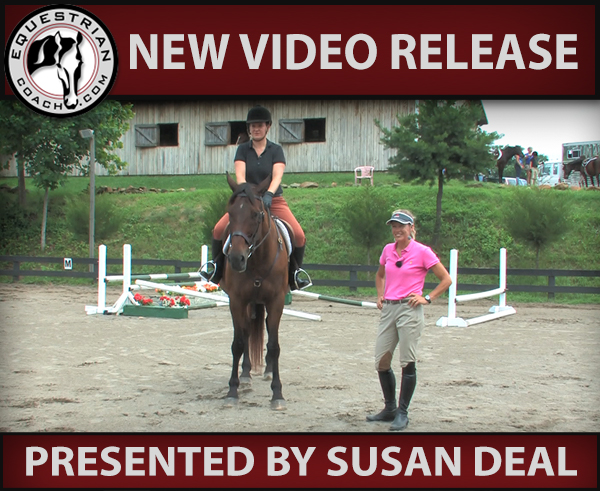 Communication with the Horse - Progression from the Elementary to Intermediate Level