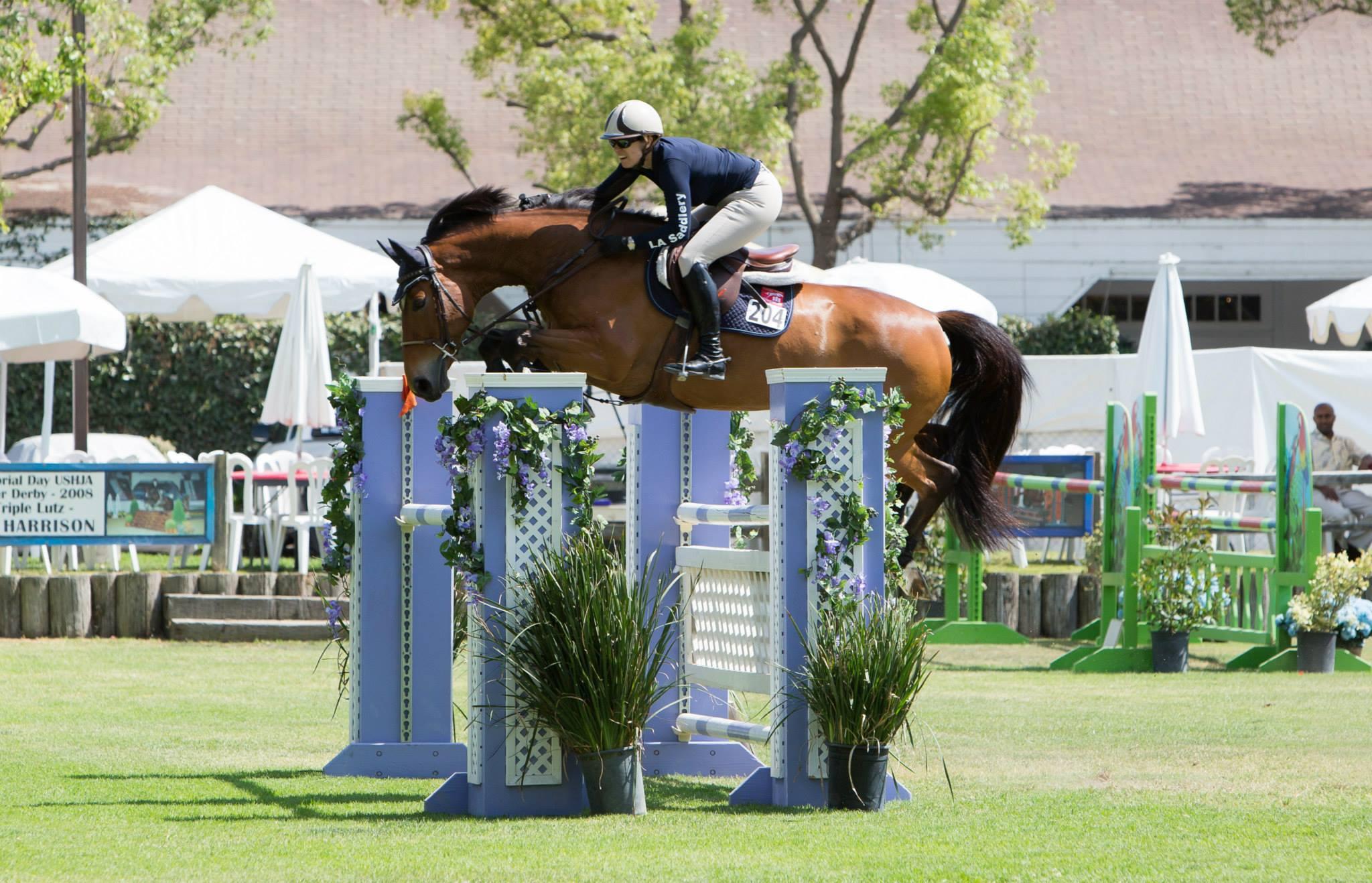 horse, showjumping, marnye, langer