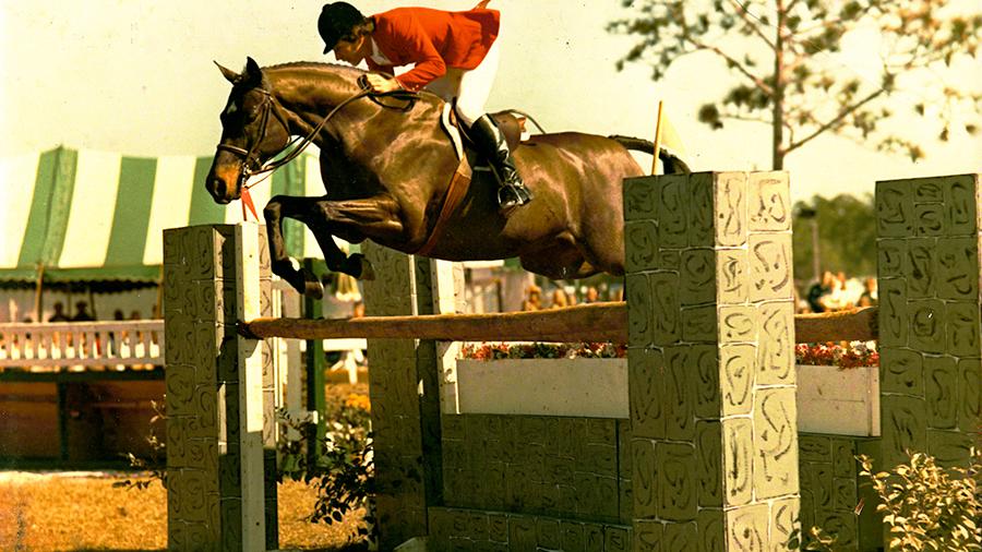 Gozzi Horse