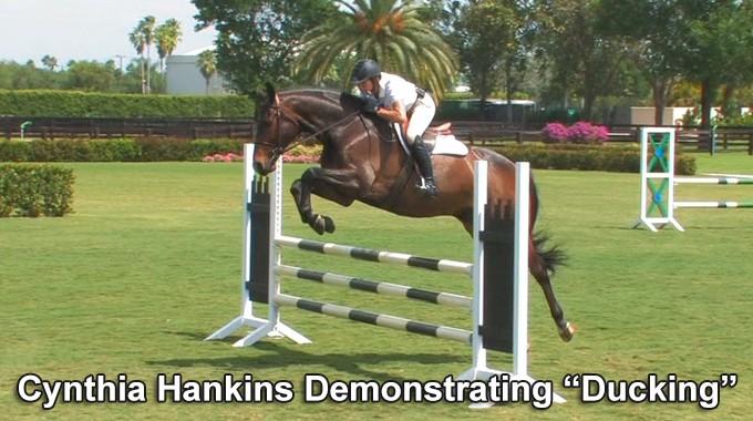Horse, Jumping, Rider,