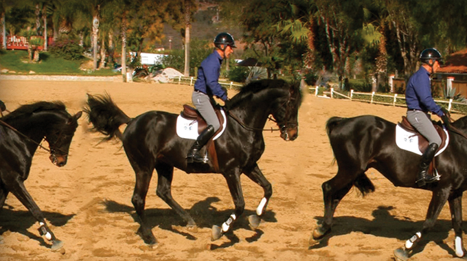 How To Help A Horse That Gets Nervous When Anticipating Flying Changes