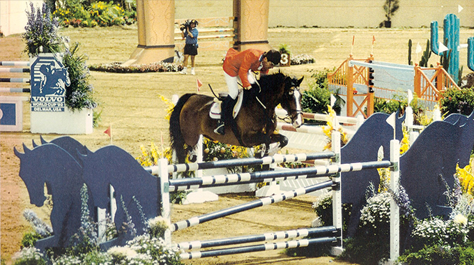 bernie traurig, maybe forever, horse, showjumping