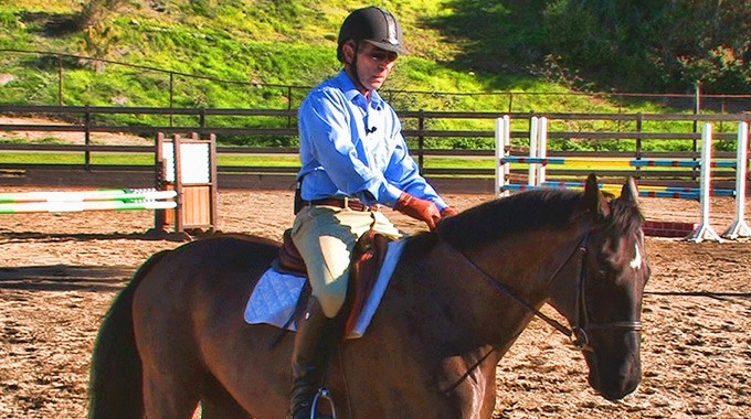 How To Use A Bearing Rein On A Horse