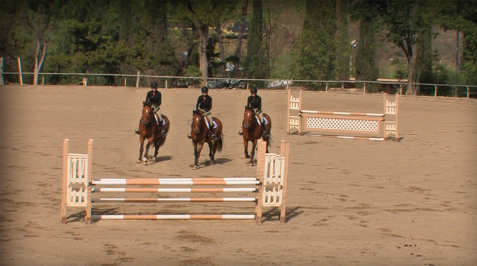 jumping a bending line on a horse