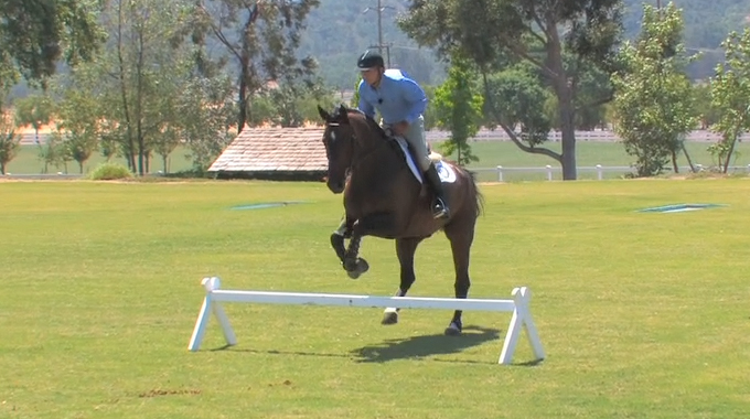 Train Your Horse To Stay Calm When Jumping With Flatwork Over Fences
