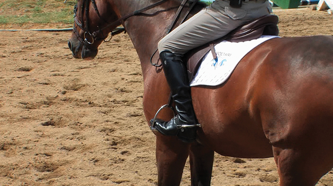 How To Stop Your Horse From Being Lazy On The Flat