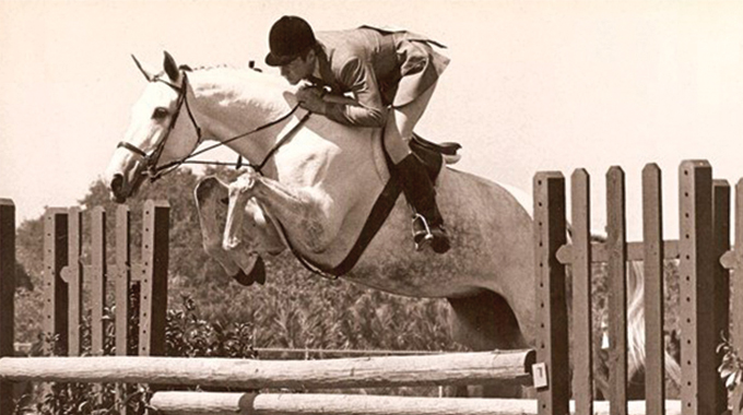 Over What Height Jump Does A Young Hunter Horse Show Their Form?