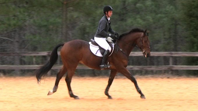 How To Get A OTTB To Pick Up The Right Lead