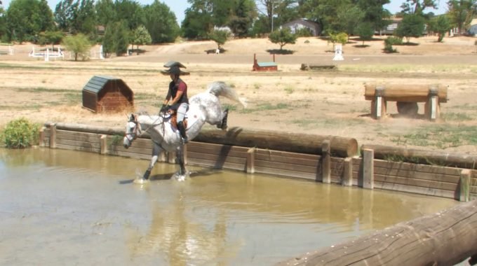 Training An Eventing Horse To Get Comfortable With Water Drop Jumps