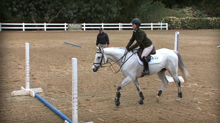 training your OTTB horse