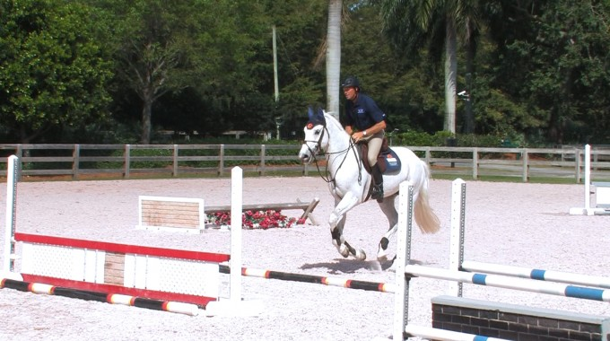 Schooling A Young Horse Over Jumps