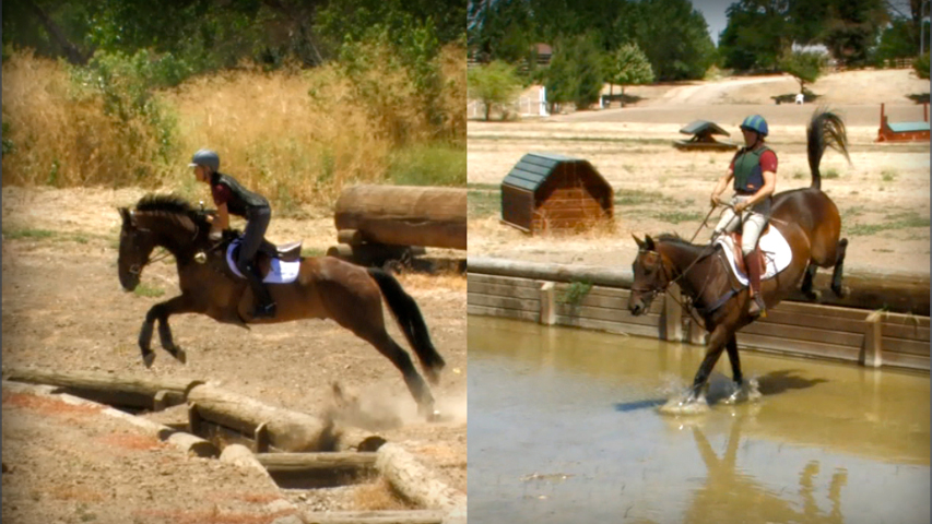 training your horse to jump ditches and water jumps on the cross country course