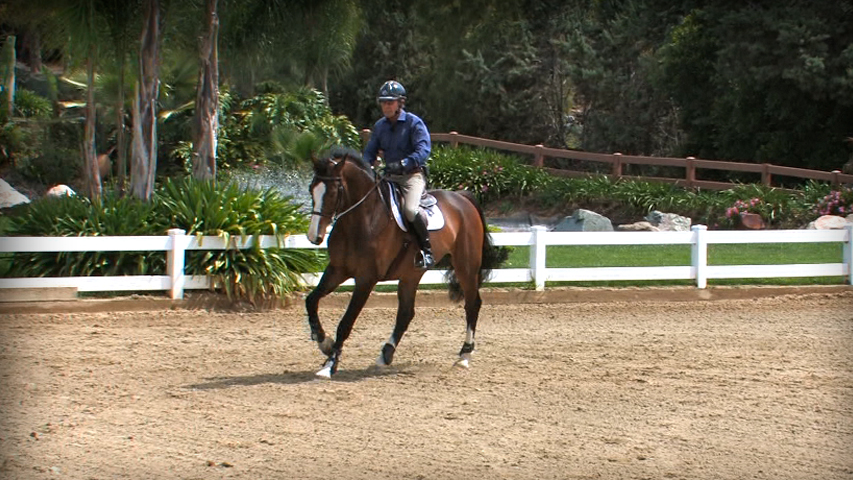 changing the bend of your horse at the counter canter