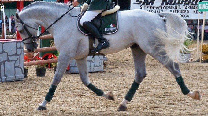 Stop Your Leg From Swinging On Your Horse