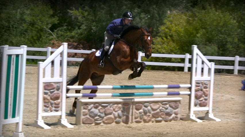perfecting your horses rideability
