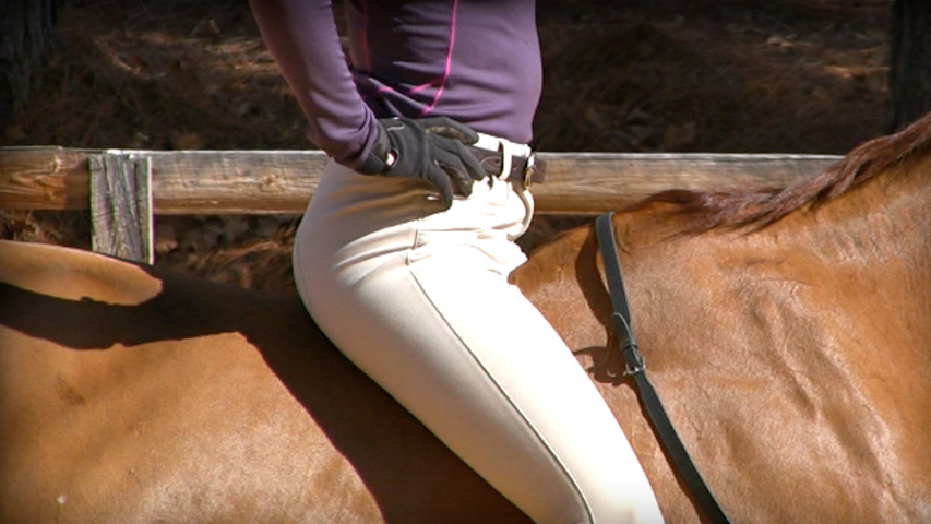 larning to have an independent seat on your horse