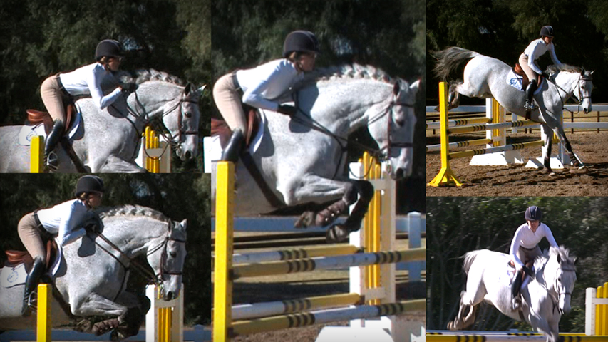 learn all the releases to use on your horse over jumps