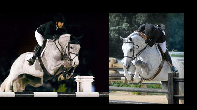 Retraining A Jumper For Hunter Derbies And Equitation