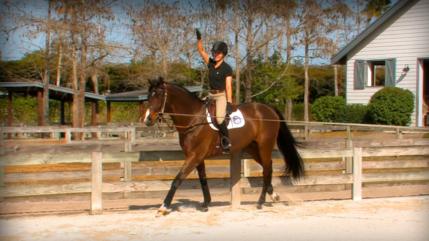 a lunge lesson to improve your riding position