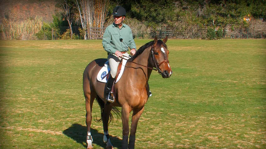 building blocks to a great position on your horse part 2