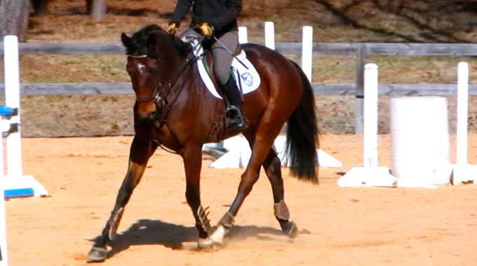 Ottb Blog Featured Image