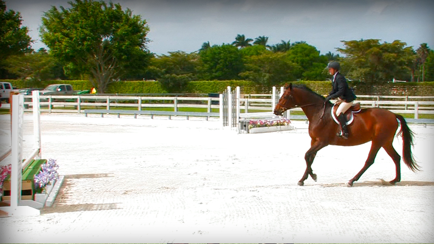 Stop Your Horse From Swapping Leads On The Take Off Of The Jump