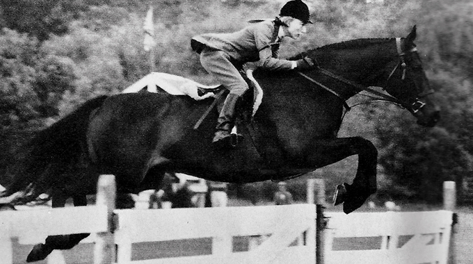 Navy Commander – Show Hunter Hall Of Fame Thoroughbred & Betty Oare's Horse Of A Lifetime