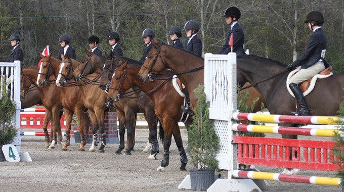 Riders Lined Up In Equitation Class