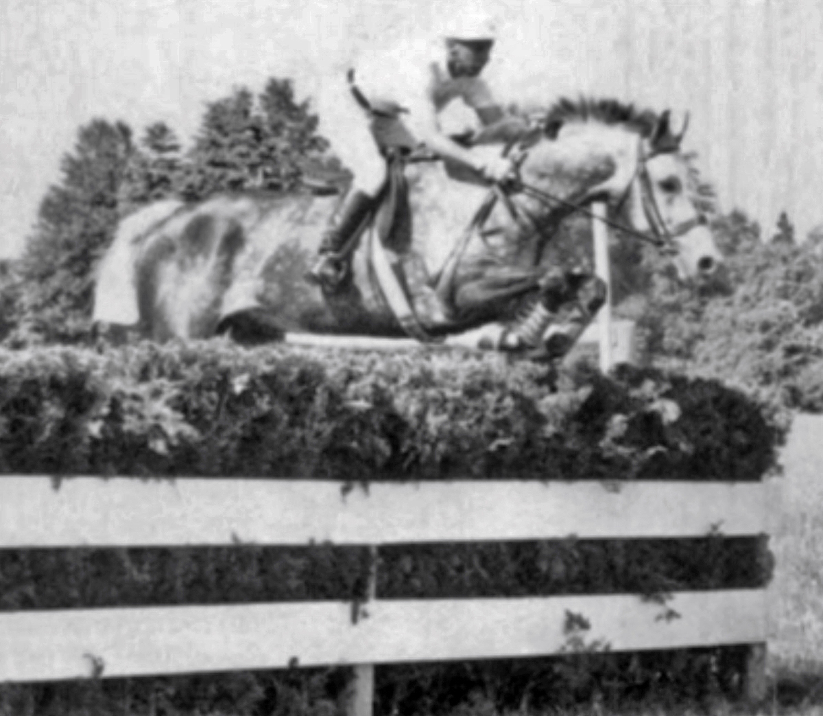 Bill Haggard during the Steeplechase phase of eventing at the 1959 Pan Am Games.