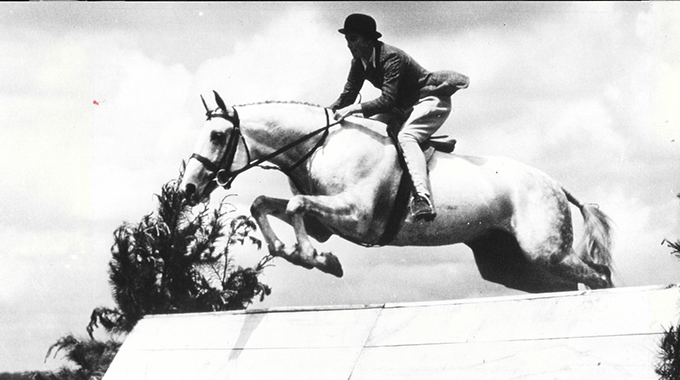 Bonne Nuit: National Show Hunter Hall Of Fame Inductee & One Of The Most Influential Sires Of Hunters & Jumpers In History