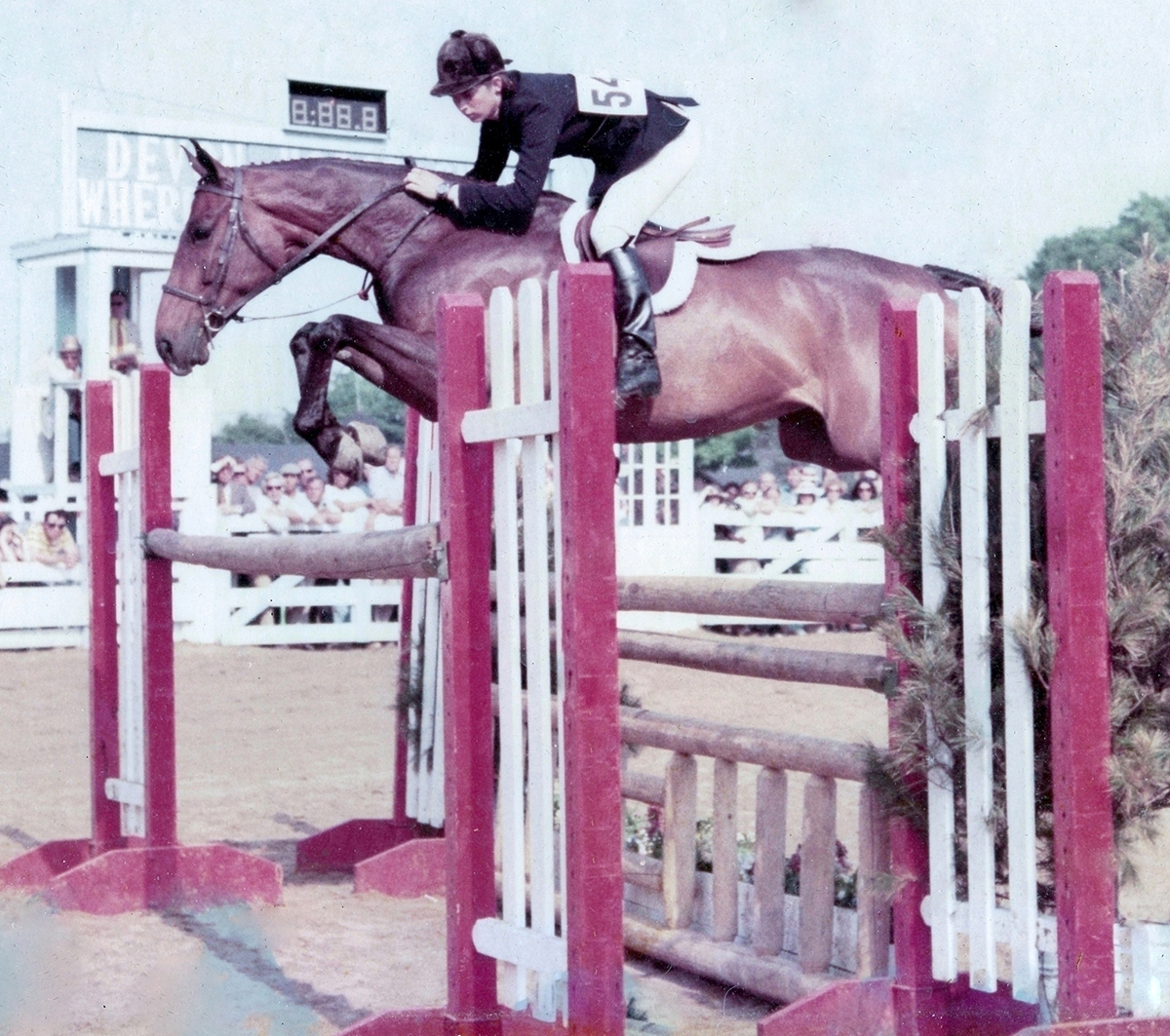 Sign The Card with Jane Womble (now Gaston up) - Regular Working Hunter Champion at Devon in 1972. Photo by Freudy.