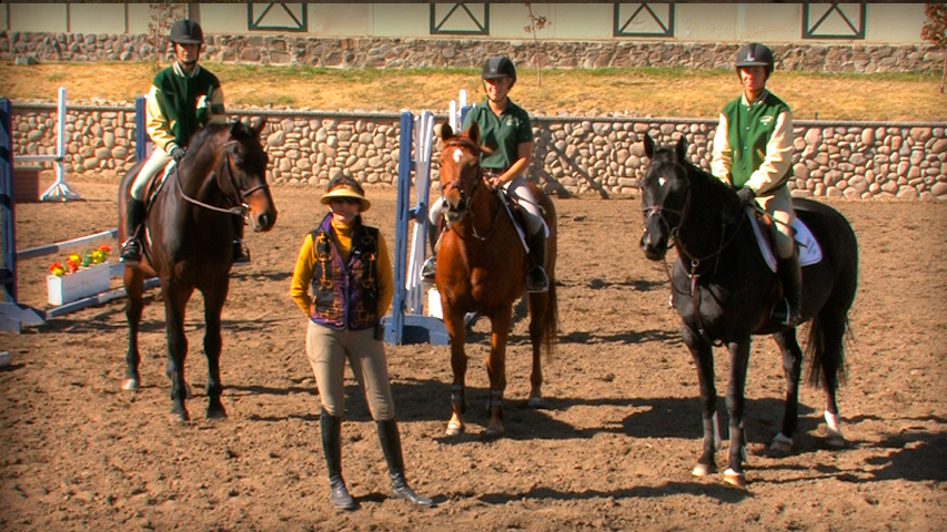shortening and lengthening your horses stride in lines