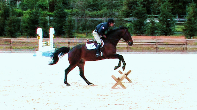 Raised Cavaletti Work: Insurance Liabilities When Riding Unsupervised By Your Trainer