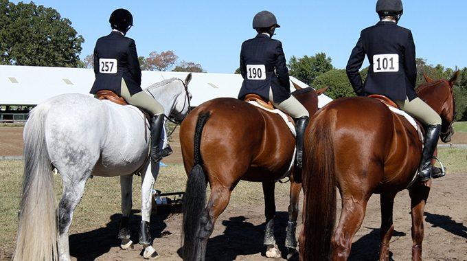 Judges' Pet Peeves: Hunter & Equitation