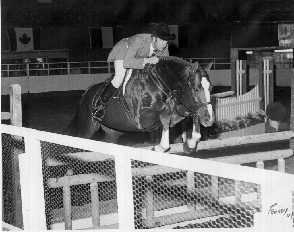 Sir Thomson, with Noel Twyman riding, at The National Horse Show in 1972