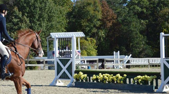 Horse Going To Jump At Horse Show