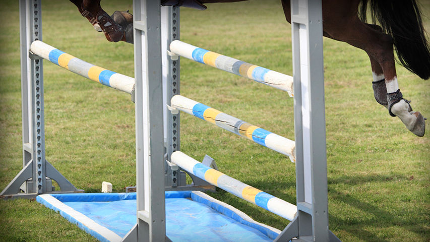 training your horse to jump a liverpool or water jump
