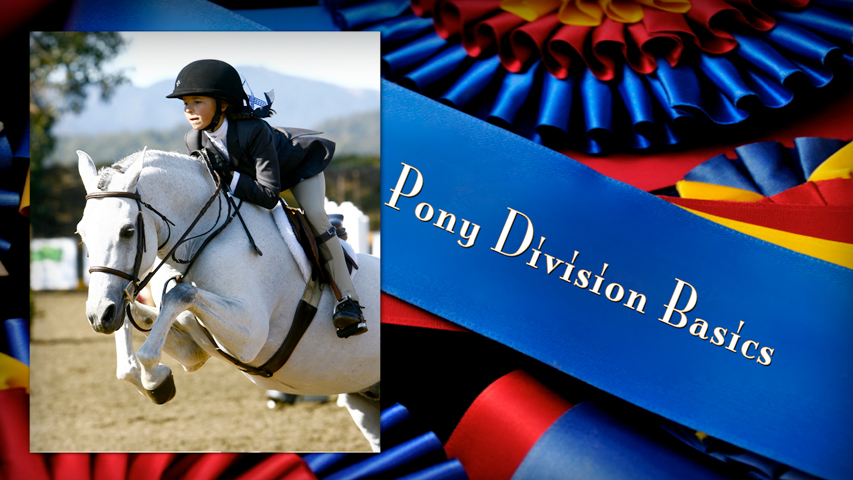 tips on how to do a pony hunter class at a horse show