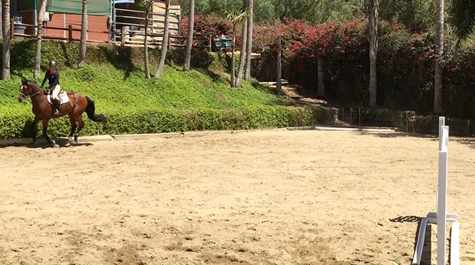 Equitation Exercises For A Small Arena