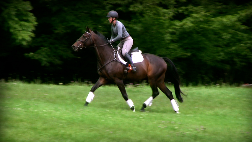 improving your horses fitness