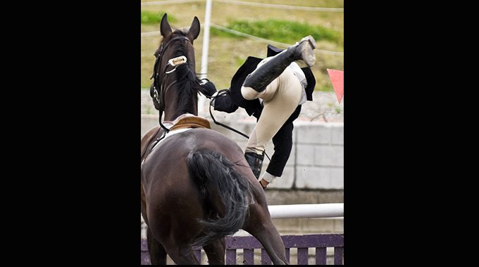 The Realities Of Falling Off Your Horse