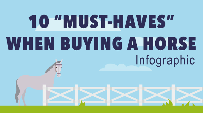 "10 ""Must Haves"" When Buying A Horse"