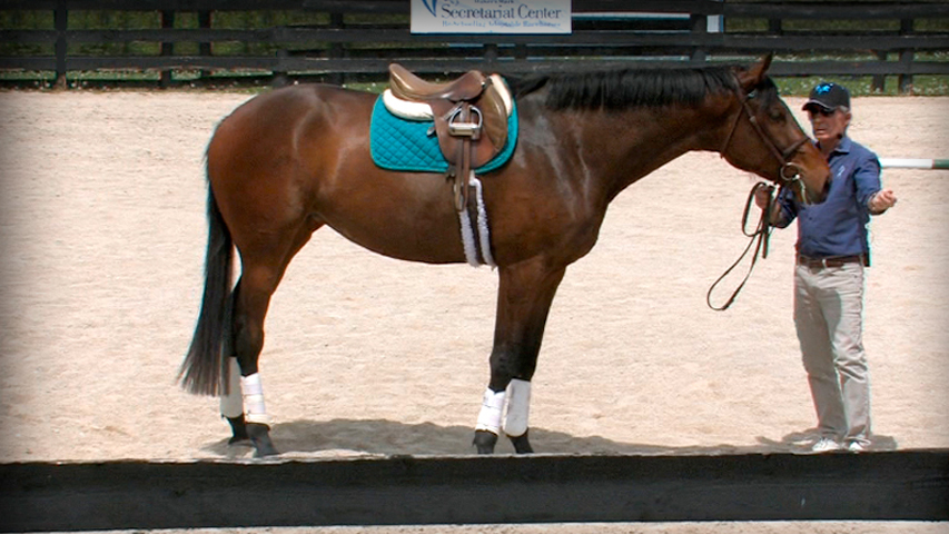 evaluating the ottb for purchase
