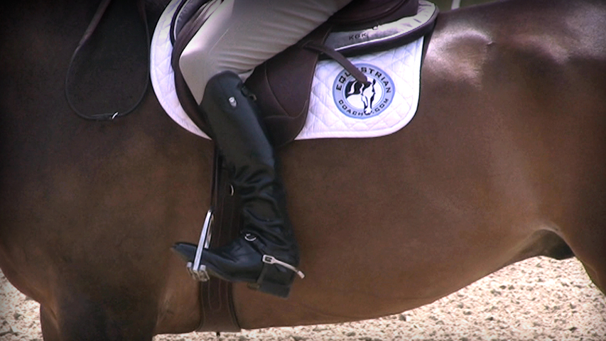 proper leg position on your horse for transitions