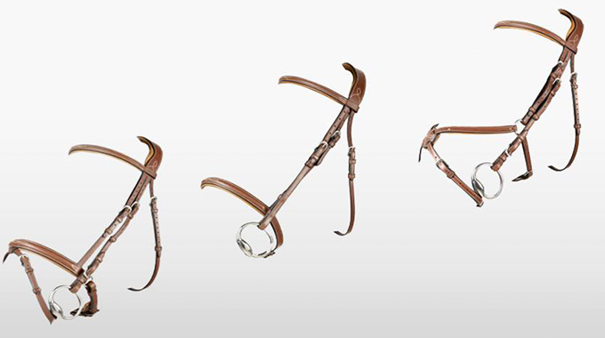 nosebands-blog_featured_image