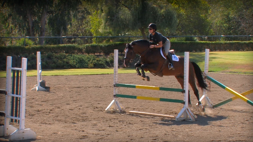 fundamental gymnastic exercise to train your horse
